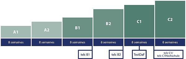 Carl Duisberg Système de cours : Durée moyenne pour atteindre l'objectif d'apprentissage